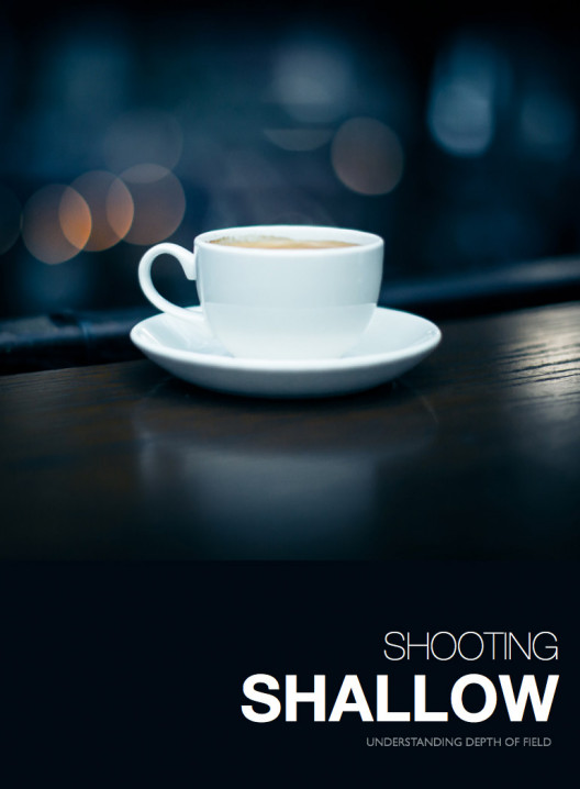Shooting Shallow eBook
