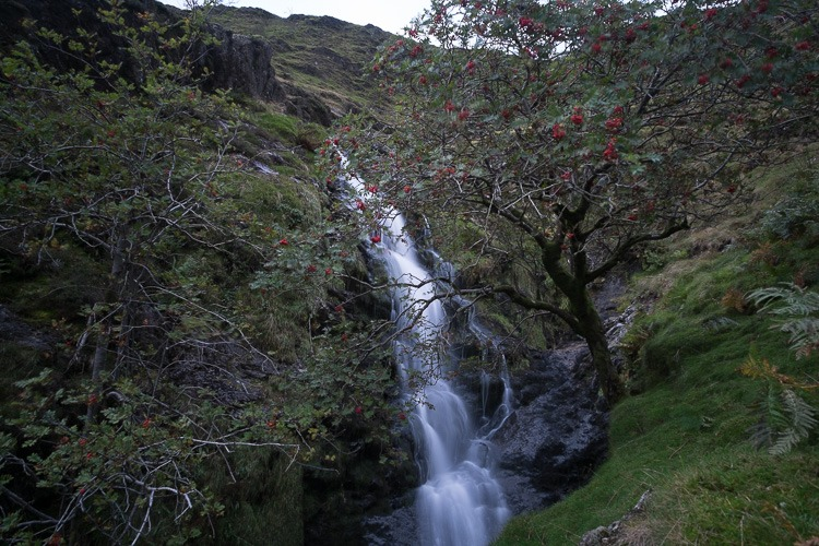 Moss Force, Newlands Hause